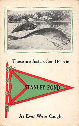 Stanley Pond Maine Giant Fish Pennant Flag Antique Postcard K103221