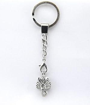 Amazon.com: Scorpio - Llavero con diseño de perlas y zodiac ...