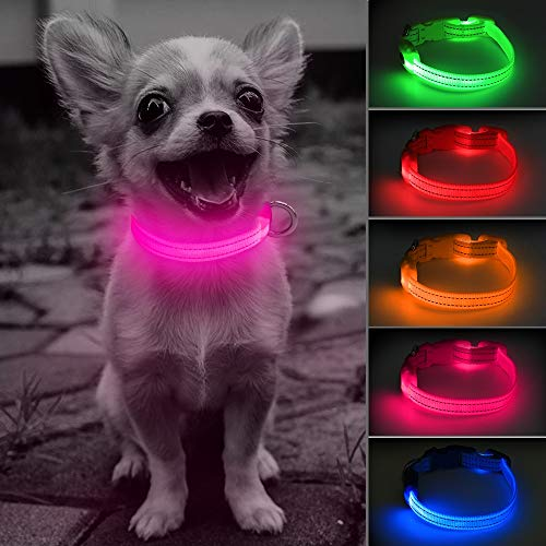 Clan_X Led Dog Collar, USB Rechargeable Glowing Pet Collar for Small Dogs& Cats, Reflective Light Up Puppy Collars Keep Your Pets Visible & Safe (Extra Small, Pink)