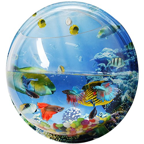 Goldfish bowl one gallon capacity reviews compare for Fish bowl amazon