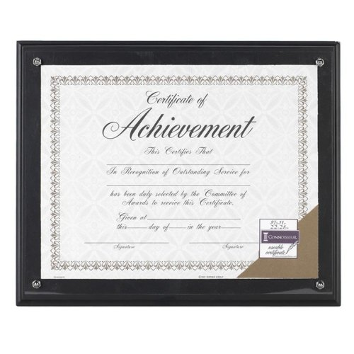 Wall Mountable Horizontal Vertical Acrylic - Burnes Award Plaque - 11