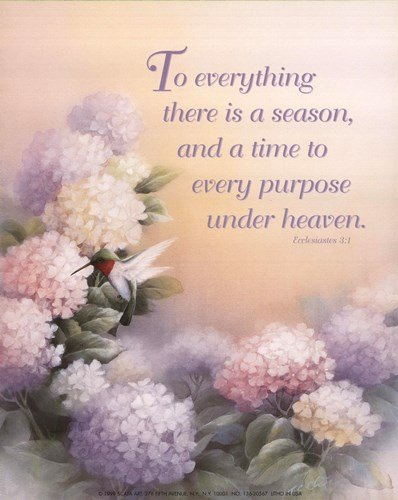 to Everything There is a Season by T.C. Chiu - 8x10 for sale  Delivered anywhere in USA