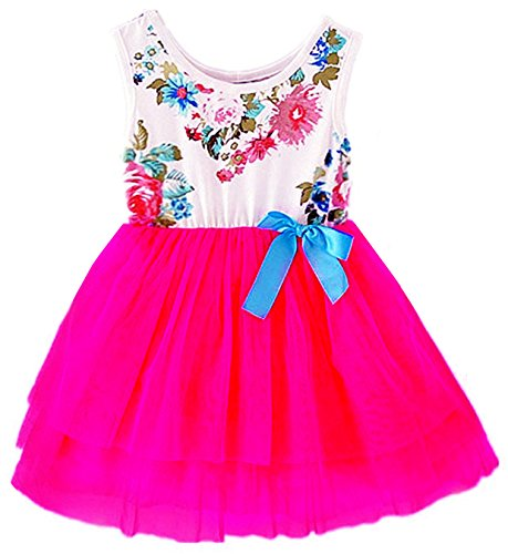 2Bunnies Baby Girls Floral Flower Girl Dress Tulle Tutu Birthday Party Sundress (5, Hot (Pink Tutu Dress)