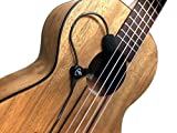 The Feather Lute Pickup with Flexible