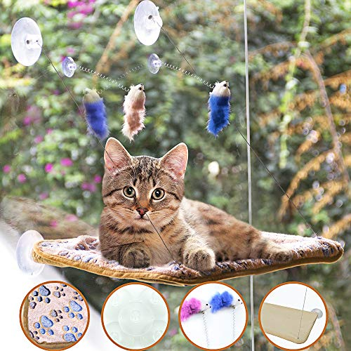 BEROVE Pet Cat Hammock Window Perch Set with Blanket and Interactive Feather Cat Toys, Big Cat Window Bed Sunny Seat, Durable Steady Cat Shelf for Kitten