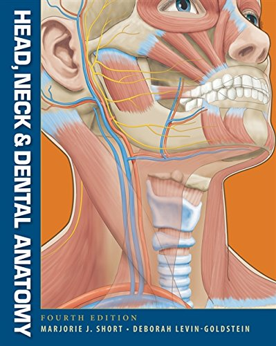 Head, Neck and Dental Anatomy by Cengage Learning