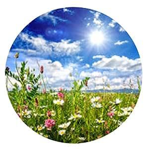 alfombrilla de ratón Invitación a relajarse: prado colorido de la flor :) - ronda - 20cm