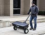 SaltDogg WB400 Professional 200 lb Capacity Walk
