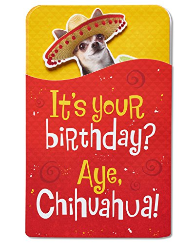 American Greetings Chihuahua Birthday Card with Music and Movement American Chihuahua