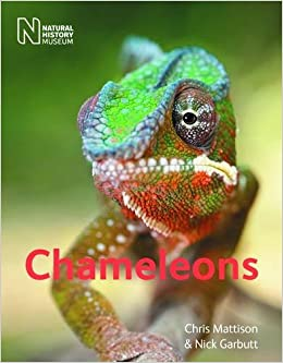 Image result for book chameleons chris mattison nick garbutt