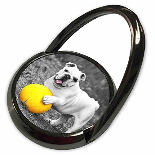 3dRose RinaPiro - Dogs - French Bulldog. Playful dog. Cool image. - Phone Ring (Playful Bulldog)