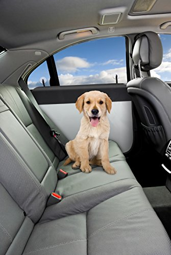 (2 Piece Best Automobile Dog Lover Waterproof Car Door Cover Protector Protection Unique Great Auto Essential Transport Gadget Summer Idea Under 25 Dollars 2019)