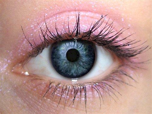 Wild Rose Eye Makeup Eye Shadow Eyeliner- THE BEST Light Pin