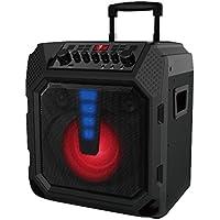Edison Professional EP-1000 High Power Portable Bluetooth Music System