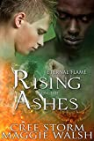 Rising From The Ashes (Eternal Flames Book 2)