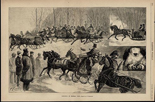 Horse Drawn Sleighs Central Park New York Winter 1882 great old vintage -