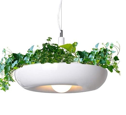 Pendant Designer Nordic Plant Suspension Lights Creative Ceiling PukXZOiT