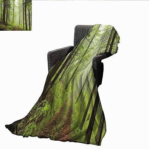 Luxury Flannel Fleece Blanket,Outdoor,Trail Trough Foggy Alders Beeches Oaks Coniferous Grove Hiking Theme,Pale Green Pale Yellow,All Season Light Weight Living Room/Bedroom Blanket 50