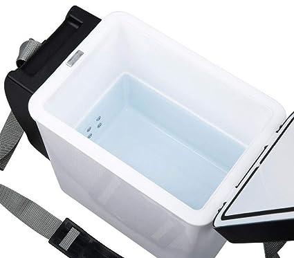 203002 Nevera portátil coche 2 en 1 efecto frío/calor con ...