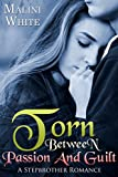TORN : Between Passion And Guilt: A Stepbrother Romance