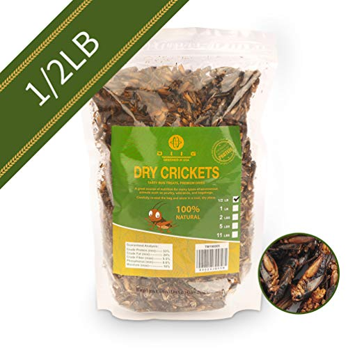 - diig Dried Crickets - Treats for Bearded Dragon Birds Chickens Hedgehog Hamster Fish Reptile Turtles, 8 oc