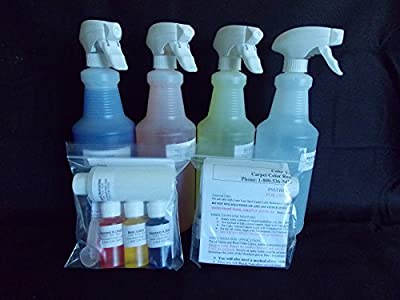 Homeowners Basic Carpet Spot Dye Kit by bleachstain