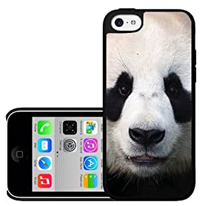 MEIMEIPanda Bear Face iphone 4/4s Hard CaseMEIMEI