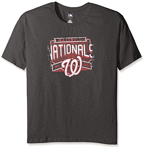 (Profile Big & Tall MLB Washington Nationals Women's Team Short Sleeved Screen T-Shirt, 3X, Charcoal/Heather)