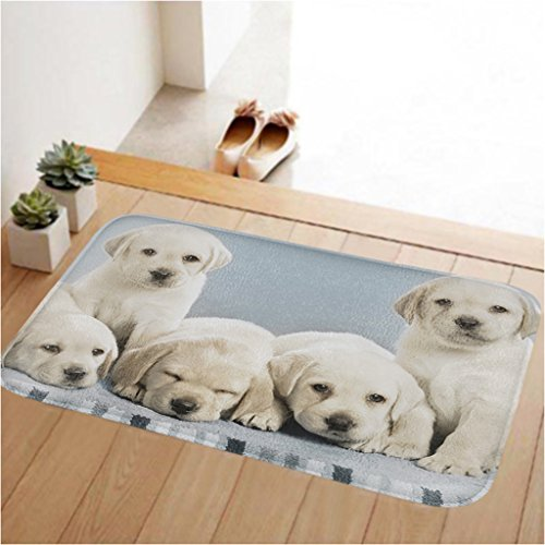 ToLuLu Small Doormat Low Profile Door Ma - Puppy Rug Shopping Results
