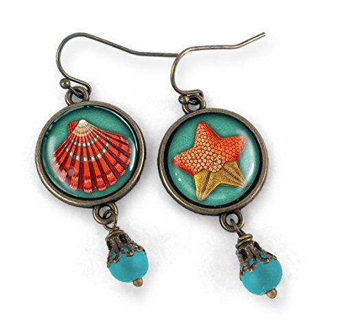 Starfish and Sea Shell -