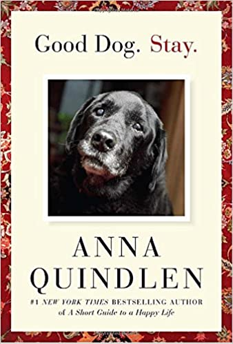 good dog stay anna quindlen com books anna quindlen 9781400067138 com books
