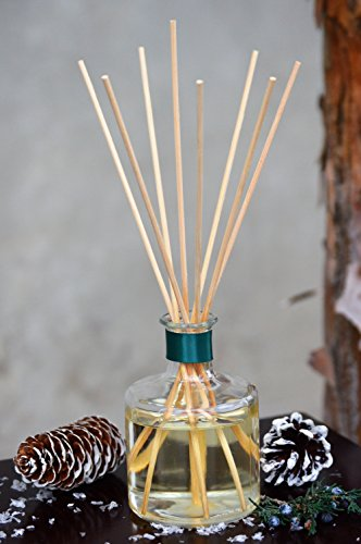 Aspen Pine Tree Oil Reed Holiday Diffuser by MINX Fragrances | Pine Needles, Juniper Berries & Vetiver Notes | Enjoy the Christmas Tree Scent All Year Long! | Made in - Pine Christmas Trees