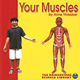 img - for Your Muscles (Your Body) book / textbook / text book
