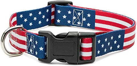 American Dog Collar Different Classic product image