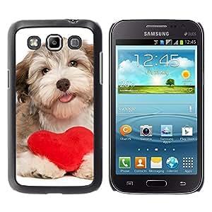 Be Good Phone Accessory // Dura Cáscara cubierta Protectora Caso Carcasa Funda de Protección para Samsung Galaxy Win I8550 I8552 Grand Quattro // Havanese Heart Valentines Love Dog P