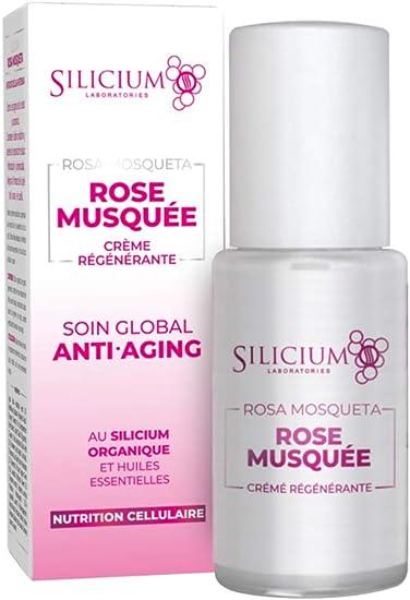 Silicium - Crema facial hidratante Rosa Mosqueta con Silicio ...