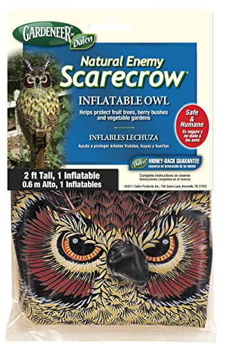 Dalen Owl (Gardeneer By Dalen Natural Enemy Scarecrow Inflatable Owl)