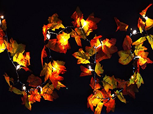 Gogo shopping 2 AA Battery Powered Lighted Fall Garland – 8.2 Feet - Shades of Orange and Yellow Leaves with 20 Lights - Perfect Fall/Thanksgiving Decoration (Warm white)