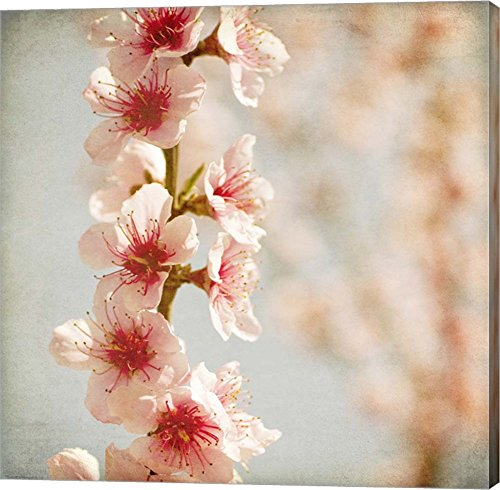- Spring Whispers 4 by Jessica Rogers Photography Canvas Art Wall Picture, Gallery Wrap, 12 x 12 inches
