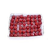 mini apples - FloristryWarehouse Artificial Mini Apple Pick Deep Shiny Red 1 Inch Diameter Box of 48
