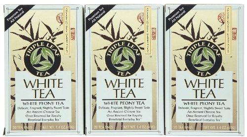 Triple Leaf White Tea - 20 bags per pack -- 6 packs per case.