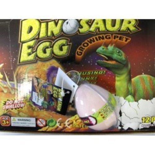 Amazon.com: Hatching Dinosaur In Egg Case Pack 12: Pet Supplies