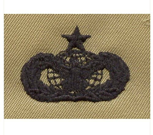 Vanguard AIR FORCE EMBROIDERED BADGE: FORCE PROTECTION: SENIOR - ABU
