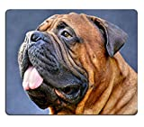 Luxlady Mouse Pad Natural Rubber Mousepad IMAGE ID: 30507947 pure bred bullmastiff dog portrait close up on dark background