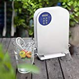 Upscale Fruits and Vegetables Pesticides Remover Ozone Generator and Disinfector - Grey