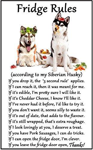 (hiusan Siberian Husky Gift - Fridge Rules Funny Fridge Stickers Warning Stickers Peel and Stick Kitchen Home Decor 6