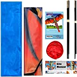 HENGDA KITE-Upgrade Classical Dragon Kite