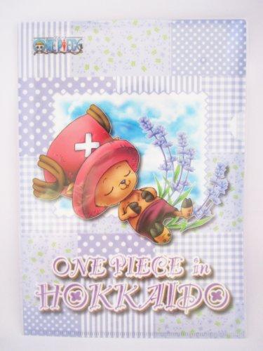 [One Piece Tony Tony Chopper Hokkaido Edition Teens Clear Plastic Document File Folders] (Tony Hawk Halloween Costume)