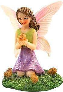 NW Wholesaler Miniature Fairy Garden Fairy Figurines - Mini Hand Painted Fairy Garden Fairies with Adorable Animals (Fairy w/Chicks)