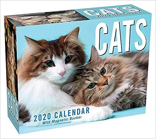 Livre numérique Cats 2020 Calendar